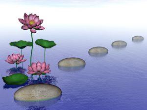 Zen Lily Flowers