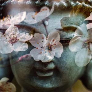 Jin Shin Do Acupressure | Hoku Integrated Health